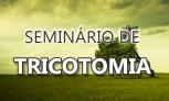 Seminário TRICOTOMIA